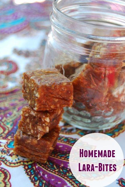 Homemade Larabar Bites Recipe | Raw
