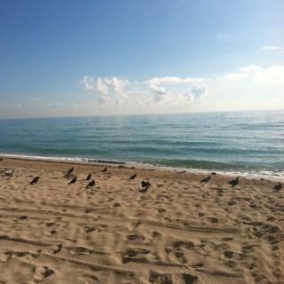 Silent Saturday: Beach Love