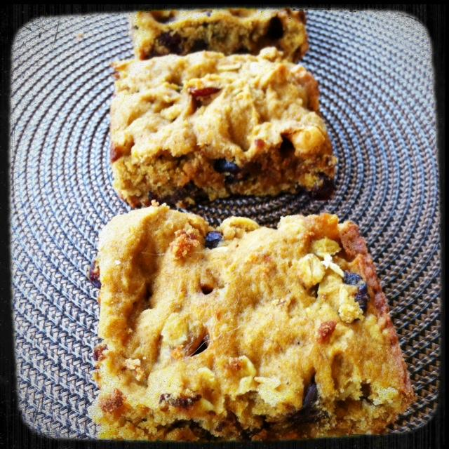 photo 92 Pumpkin Oatmeal Bars