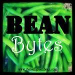Bean Bytes #2