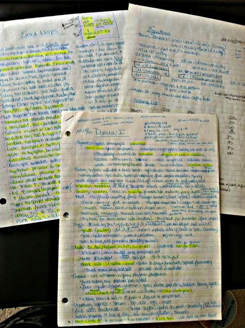 how to pass the registered dietitian exam rh theleangreenbean com dtr exam study guide Bicep DTR