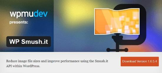 smush it plugin
