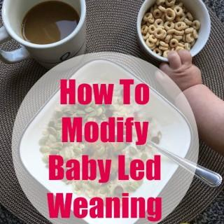 How To Modify Baby Led Weaning