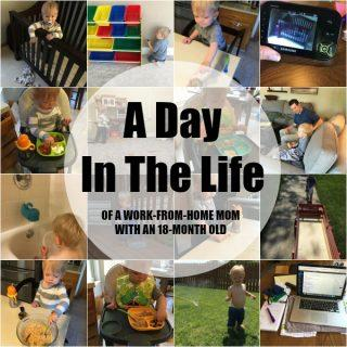 A Day In The Life – 18 Months