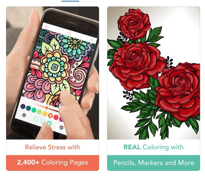Pigment App