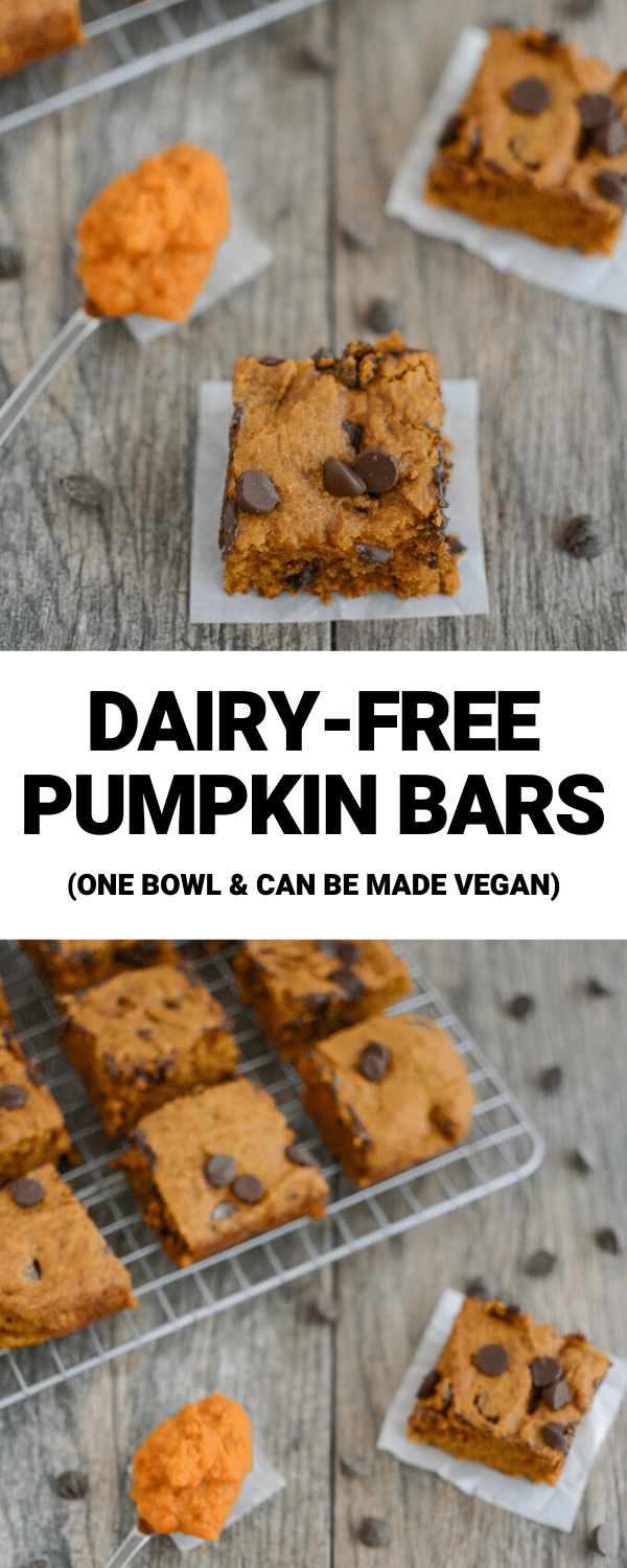 These Dairy-free Pumpkin Bars are so easy to whip up for a snack or dessert! They require just one bowl and one measuring cup!