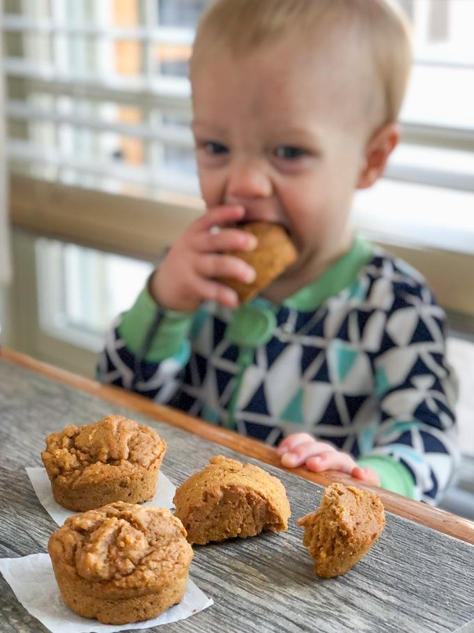 toddler eating carrot applesauce muffins